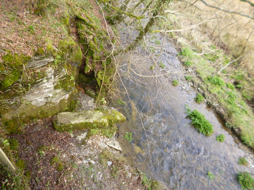 Ogham stone at Slaughterbridge